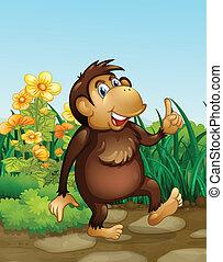 A monkey in the fields