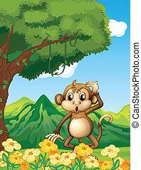 A monkey near the mountain