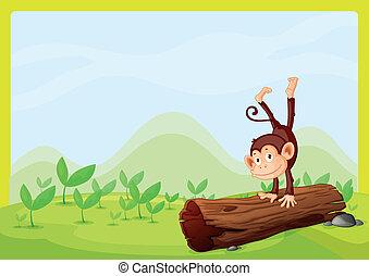 A monkey playing on a wood