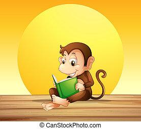 A monkey reading