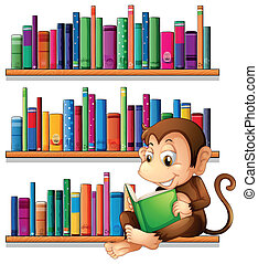 A monkey reading in front of the bookshelves - Illustration...