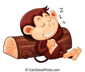 A monkey sleeping on white background