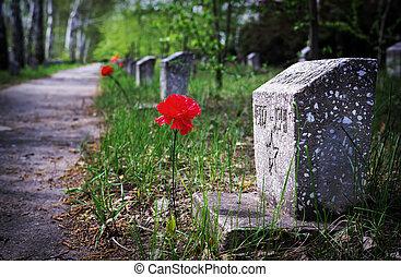 a, monumento, para, a, caído, de, a, segundo, mundo, guerra, com, a, atribuídos, colors.