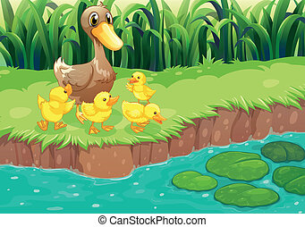 A mother duck with her ducklings at the river - Illustration...