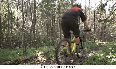 A mountain biker is riding a bicycle by a forest bicycle,...