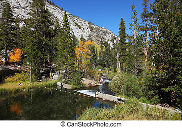 A mountain lake and forest