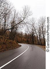 a mountain road through the Apuseni Mountains in Romania