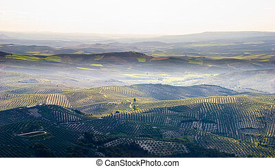 A mountain top view of Andalusian countryside - A mountain...