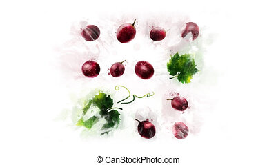 A moving illustration of Grape on an alpha channel - The...