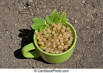 A mug with white currant berries and green leaves is on the ground.