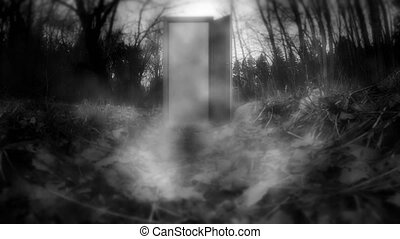 A mysterious door with haze.