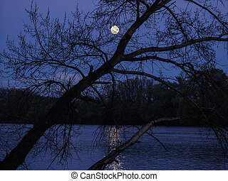 A mysterious night view on the river with a full moon and a moon path.