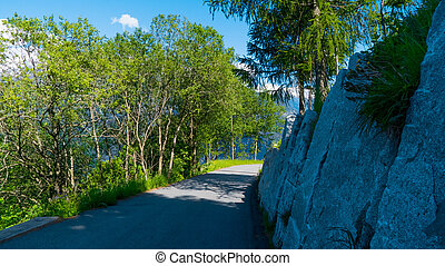 A narrow path in the Alpine mountains.