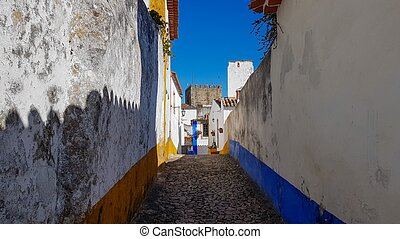 a narrow street inside of the obidos castle in Portugal