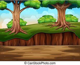 A nature jungle background