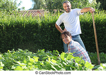 A nice couple gardening.