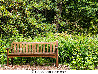 Nice Wooden Bench in Forest