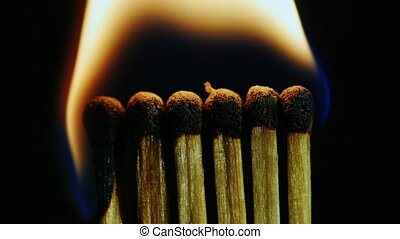 A number of matches ignited from one another
