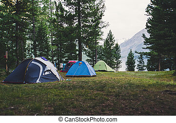 A number of tents standing on a meadow in the woods