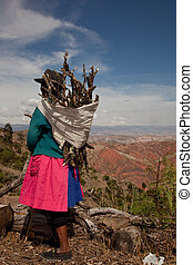 A old Woman With Firewood in Peru