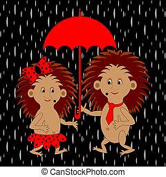 a, paar, von, lustiges, karikatur, igel, unter, roter schirm, in, der, rain., vector-art, abbildung