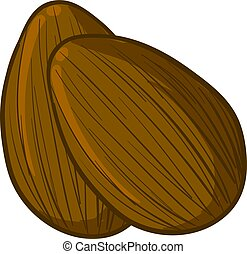 A pair of almonds, illustration, vector on white background.