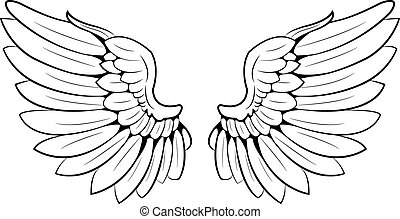 wings - a pair of wings