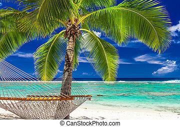 A single palm tree with a hammock on the beach of Rarotonga, Cook Islands