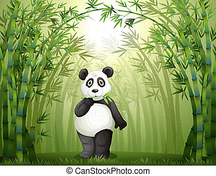 A panda in the bamboo forest