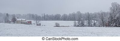 Panorama of Snow Covered Farmland and Forest