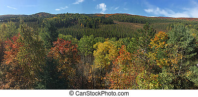 Panorama view of Algonquin in autumn