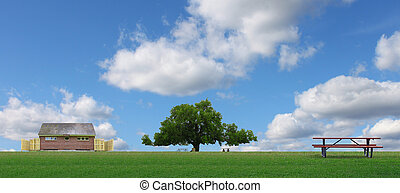A panoramic view of a park field on a summer day and restrooms with a large oak tree and picnic tables with a beautiful blue summer cloud filled sky.