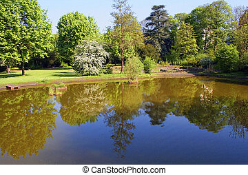 A park with reflections of trees in a lake
