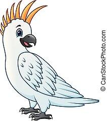 A parrot bird cartoon