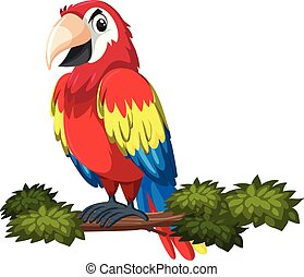 A parrot character on tree branch