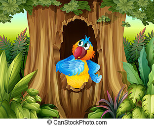 A parrot inside a tree hollow - Illustration of a parrot...
