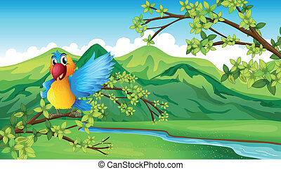 A parrot near the river