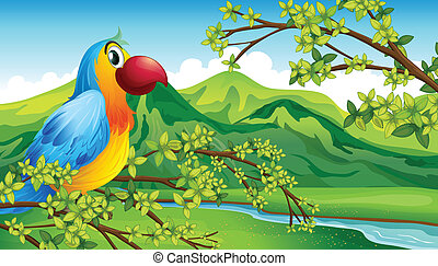 A parrot on a branch of a tree - Illustration of a parrot on...