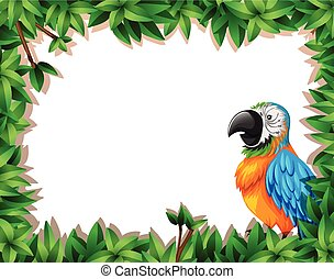 A parrot on nature frame