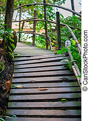 A path in the mountains leading to the beach of Ao Nang, Thailand