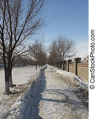 A path in the park in winter