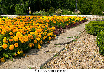 A path through flowerbed of orange marigolds - The residence...