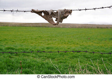 A peace of fabric on barbed wire