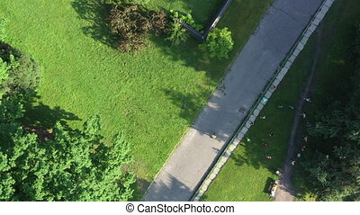 A person runs along a path in a summer park. Morning run in ...