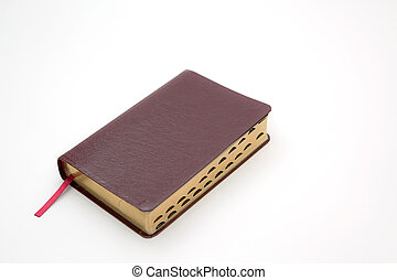 Holy Bible Isolated