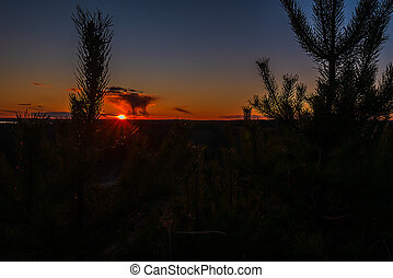 A photo of the sunset taken from the edge of tree.