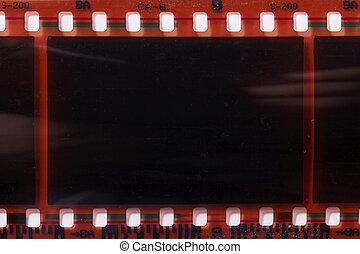 photographic film negative isolated