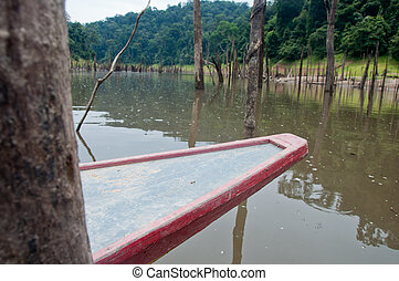 boat in forest