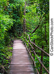 A picturesque wooden path in Thailand in the forest