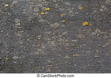 A piece of slate with a splash of yellow moss is shot closeup. Material for the construction of the roof. Gray abstract background.